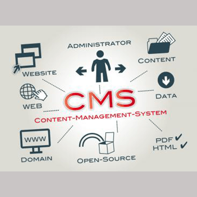 Maharaja Infotech All Type of CMS